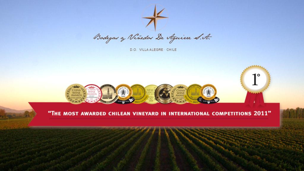 Bodegas y Vinedos de Aguirre ist das meist ausgezeichnetes Weingut Chiles